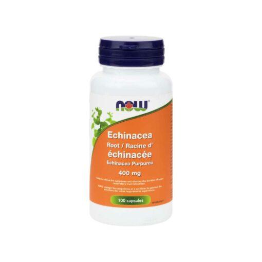 Echinacea 400 mg Capsules Now Foods